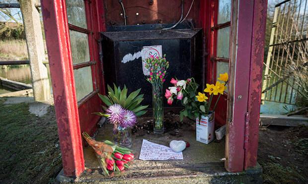 Город в Великобритании предлагает 380 000 $ за информацию об убийце любимого местного гуся