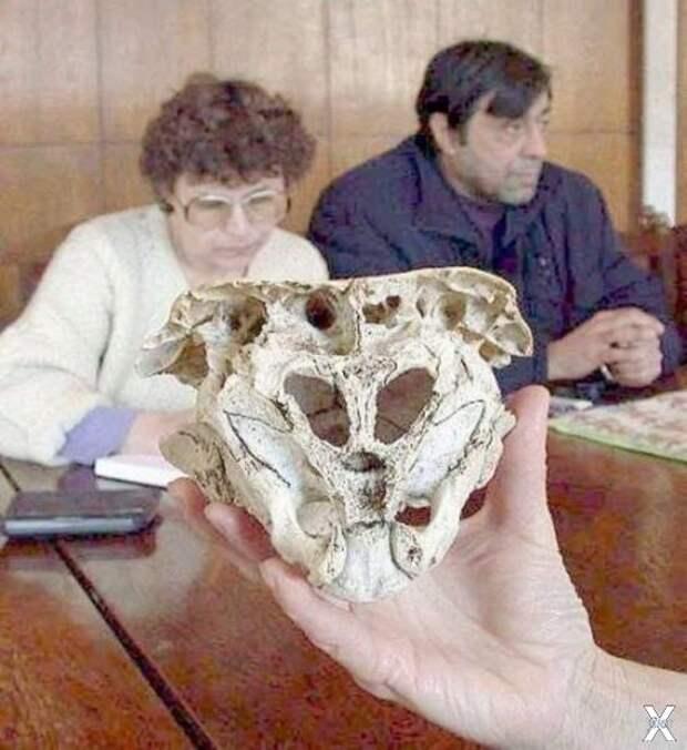 Родопский череп - еще один артефакт Ватикана?