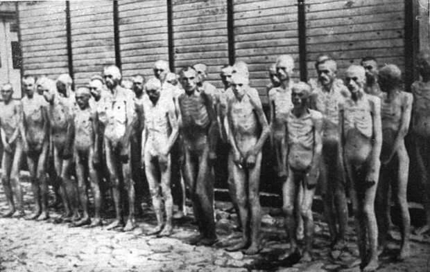 Юрий Селиванов: «План голода». Пора напомнить тем, кто забыл