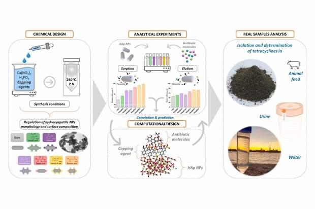 Руководство шеф-поваров в области химии: учёные СПбГУ создали сорбент, который поможет очищать сточные воды от антибиотиков