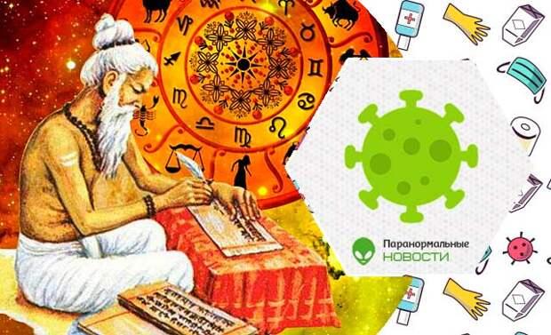 Аюрведа, веды, вирус, коронавирус, древние тексты, медицины, Индия