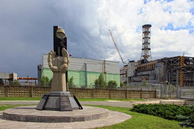 В Чернобыле заметили гигантскую бабочку