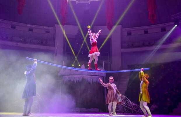 Кабмин утвердил правила выплат грантов частным циркам