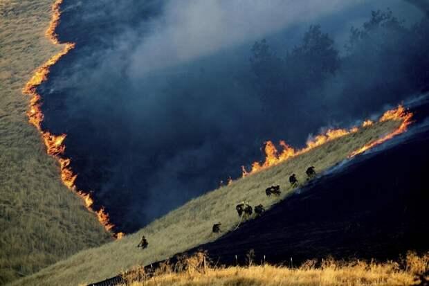16. Пожарные тушат пожар в Калифорнии. Честно говоря, так до конца и не понял, как получилась такая фотография