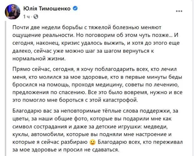 Тимошенко: кризисное состояние удалось пережить