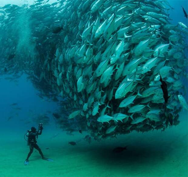 Рыбаки искупались в рыбе