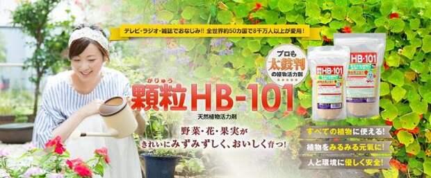 Стимулятор роста растений HB-101 - рука помощи для наших растений из Японии - из отзывов о продукте. Фото с сайта hb-101.co.jp