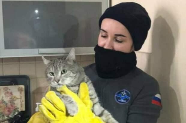 Застрявшего между труб кота Василия спасли в Отрадном
