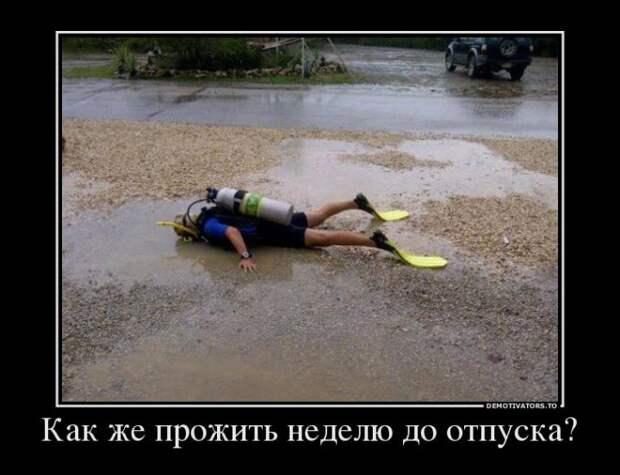 Смешные картинки про отпуск с надписями (15 фото)