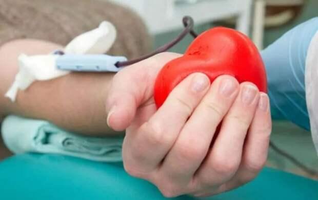 За три месяца томские доноры сдали больше 4 тысяч литров крови