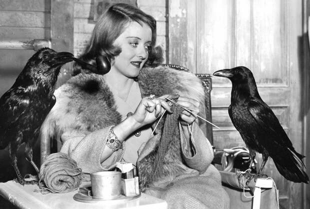Bette Davis in The Bride Came C.O.D directed by William Keighley, 1941.jpeg