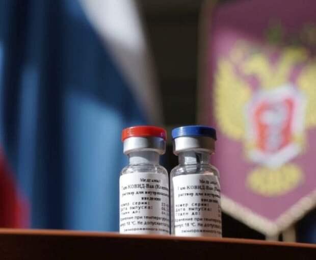 Вакцину от коронавируса Sputnik V выпустили в гражданский оборот