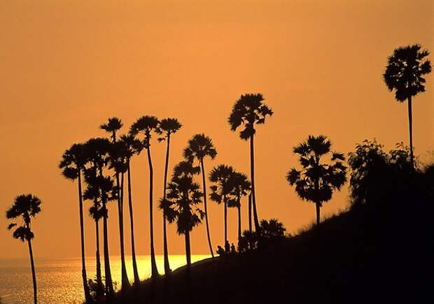 Таиланд первым для иностранцев открывает остров Пхукет, остальные курорты потом
