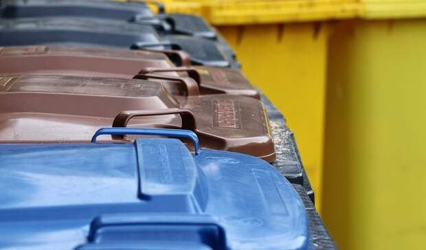 Рекламная кампания про раздельный сбор мусора охватит 50млн россиян