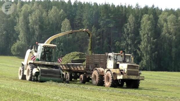 Из 25 районов Удмуртии о потерях урожая не заявили всего четыре района республики