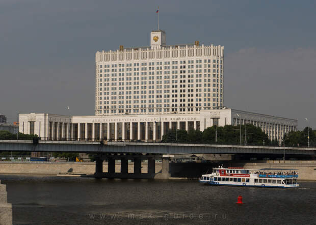 Ворон с крыши здания правительства РФ прогонят за 42 миллиона рублей