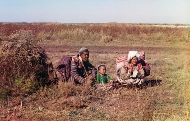 Киргизы-кочевники в Голодной степи (нынешний Узбекистан и Казахстан), около 1910 года. (Prokudin-Gorskii Collection/LOC) империя., путешествия, цветное фото