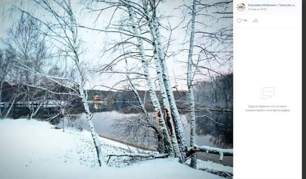 Фото дня: белая береза принакрылась снегом