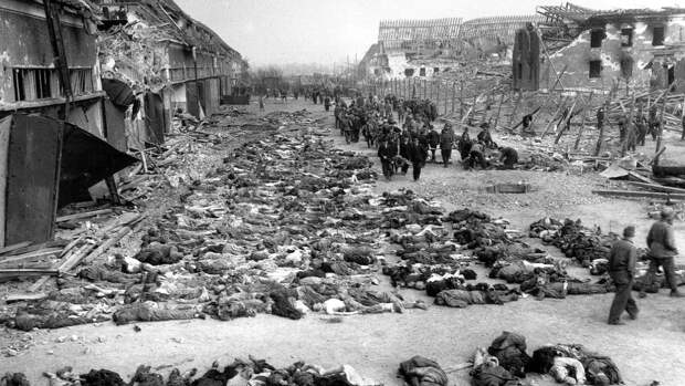 Дневники немецкого солдата показали ужасы фашистского режима прошлого века