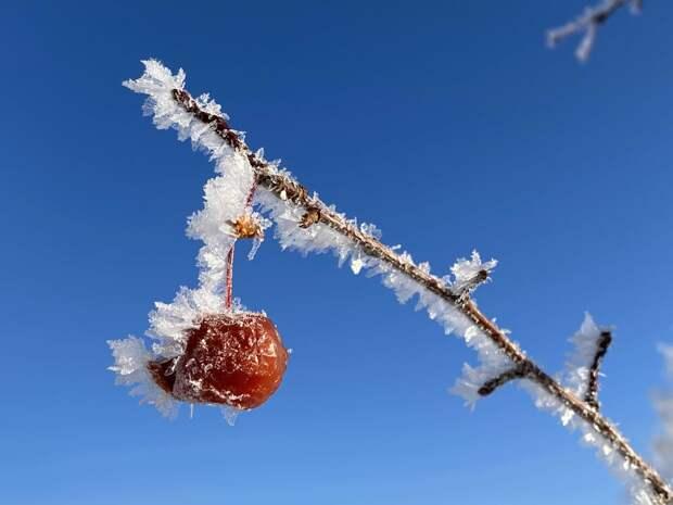 30-градусные морозы ожидают Удмуртию