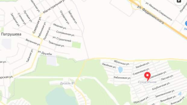 Под Тюменью сотни дачников ДНТ «Суходольное» остаются без электричества из-за молнии