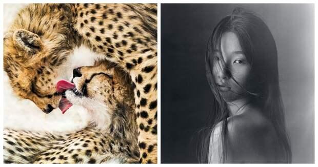 Фотографии из шорт-листа конкурса 2020 Sony World Photography Awards