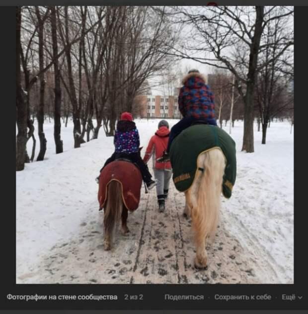 Фото: скриншот записи на странице сообщества «Отрадное Live» Вконтакте