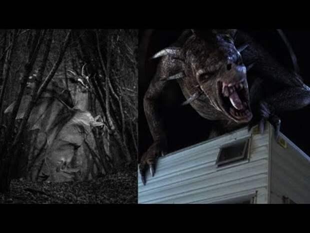 ДЬЯВОЛ из ДЖЕРСИ. Реальный зверь или МИФИЧЕСКОЕ СУЩЕСТВО?