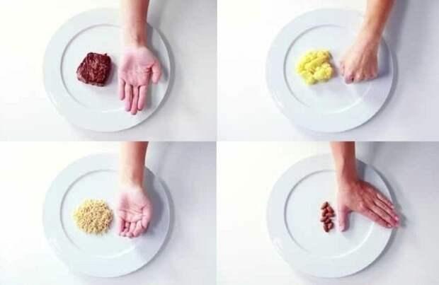 Как определять правильный размер порций еды при помощи правила рук