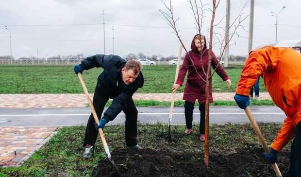 Гагаринский сад заложили вСтаврополе