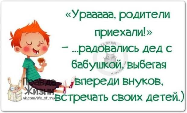 https://mtdata.ru/u16/photo810E/20800353665-0/original.jpeg