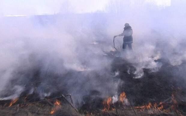 «Радиация превышена в десятки раз»: эколог рассказал о пожаре в Чернобыльской зоне