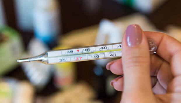 Более 20 новых случаев заражения коронавирусом выявили в Московском регионе