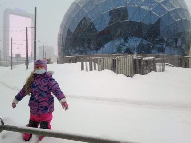 Фото дня: «Яйцо Сокола» утонуло в снегу