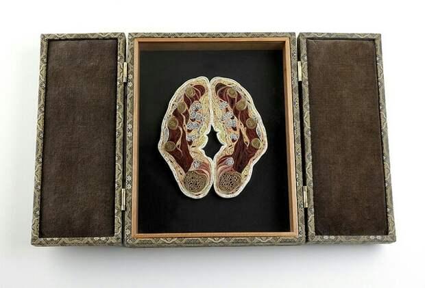 Lisa Nilsson: биология квиллинга