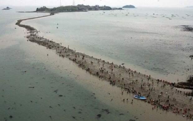 Дорога, разделяющая море: это чудо можно увидеть своими глазами и находится оно на острове Чиндо