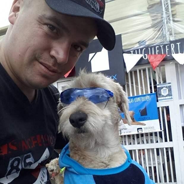 В Колумбии бывшая бродячая собака стала помощником полицейского