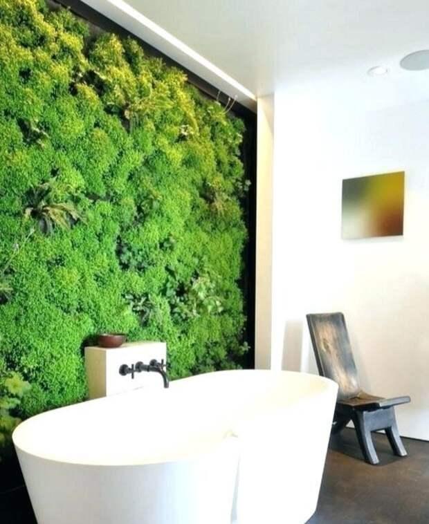 Как оформить зелёную стену из растений в доме