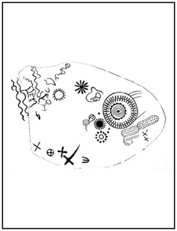 Пиктограмма у древней астрономической обсерватории у горы Севсар. Армения. Мартунийский р-он. Прорисовка Мартиросяна А. А. Исраеляна А. Р.