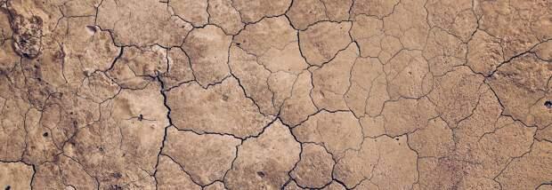 Почему глобальное потепление страшнее ковида