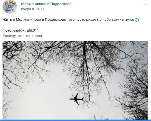 Фото дня: стальные птицы над Молжаниновским