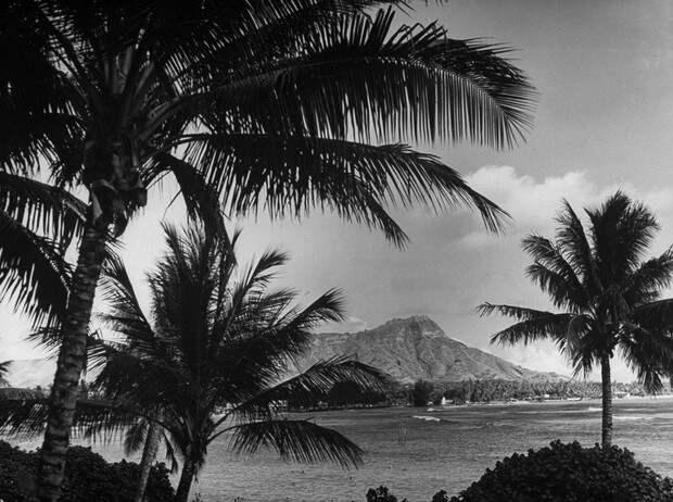 Аннексированный рай: жизнь исмерть последней принцессы Гавайского королевства
