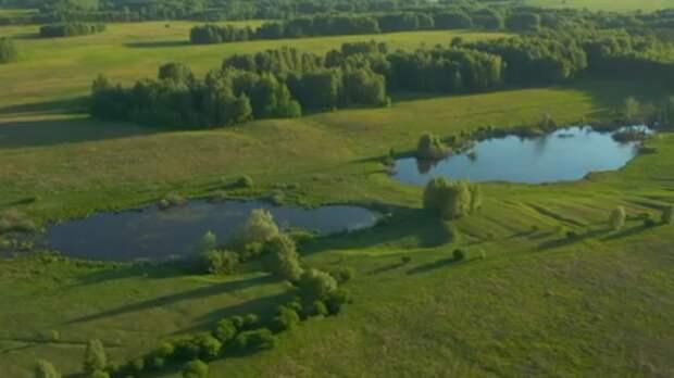 Жители возмутились продажей озера