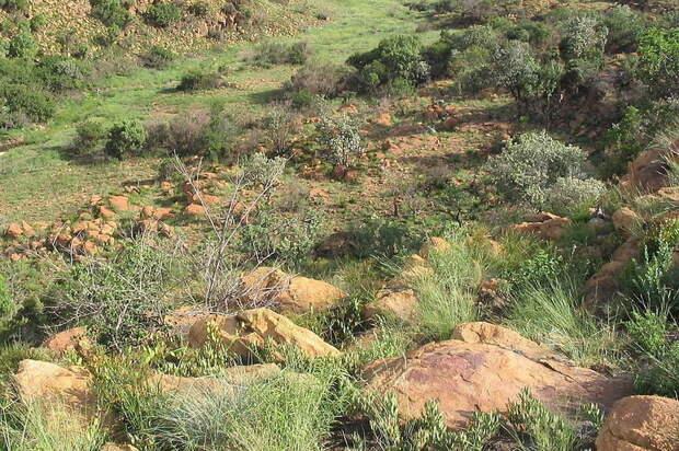 В ЮАР обнаружили древний город народа тсвана, в котором жили 10 000 человек