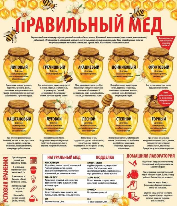Выбирайте правильный мед