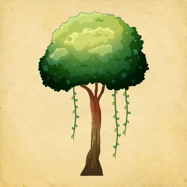 Выбираем счастливое деревце и смотрим результат , ТЕСТ.