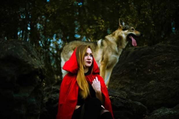 Красная шапочка и Волк - сторителлинг по ТРИЗ-методу АПАП