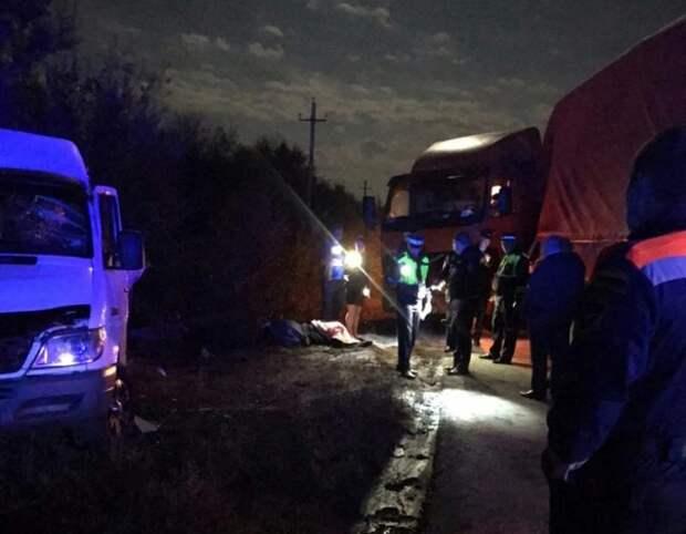 В результате столкновения микроавтобуса и фуры в Ростовской области погибли люди