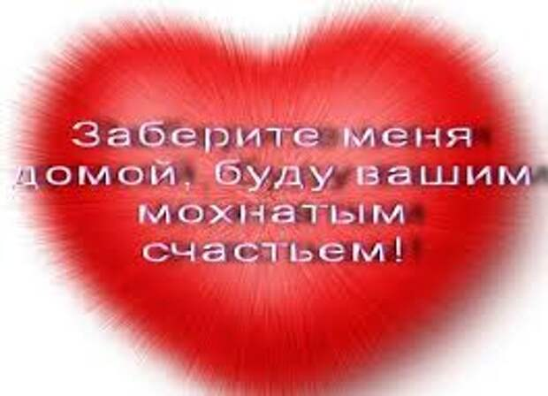 Просто подарите ей тепло своего сердца и свою любовь!