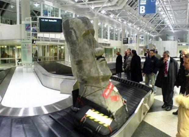 Неудавшаяся контрабанда, или Странные вещи, которые люди пытались провезти с собой в самолете
